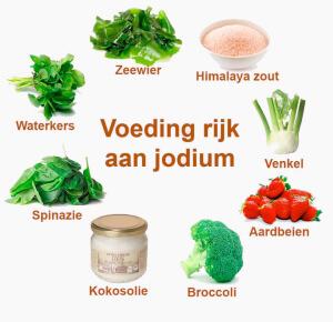 voeding-rijk-aan-jodium
