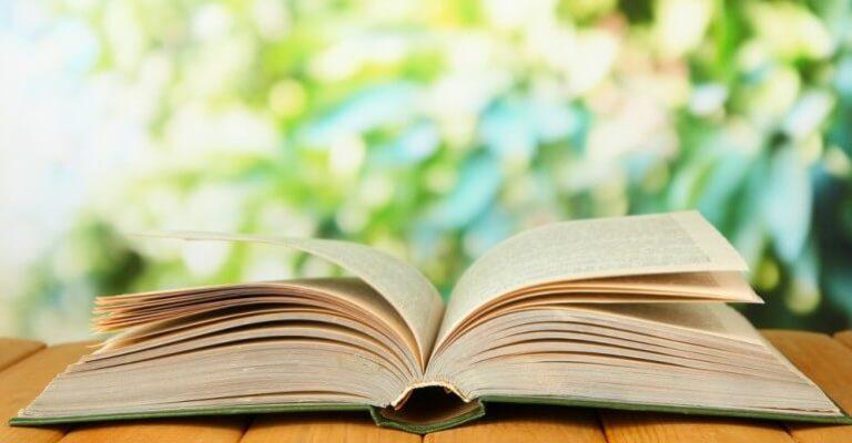 boek-lezen-770x513