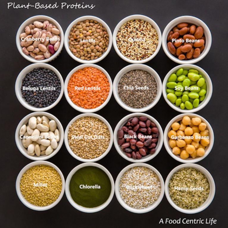 in wat zit veel eiwitten
